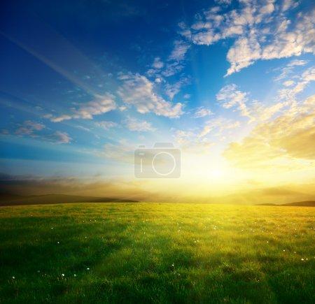 Foto de Campo de hierba del resorte y la puesta del sol - Imagen libre de derechos