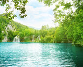Lake in deep mountain forest