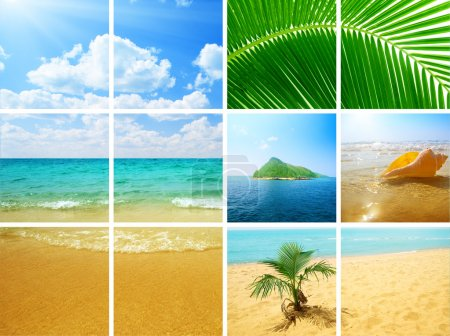 Photo for Collage photos of ocean nature - Royalty Free Image