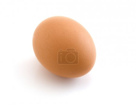 Egg isolated on the white background