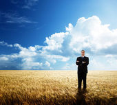 Young businessman on yollow wheat field