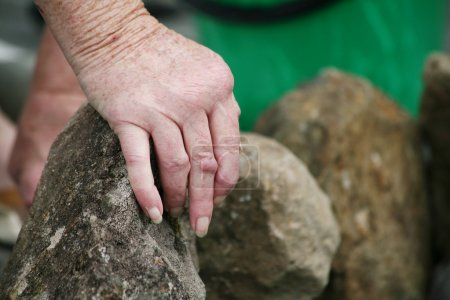 Living with pain series. Hands of a senior woman with rheumatoid arthritis moving rocks in the garden