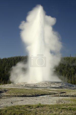 Old Faithful - Yellowstone Park