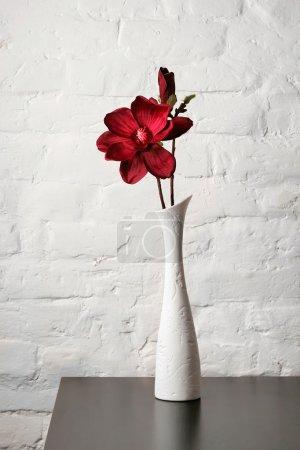 Flower in the white vase