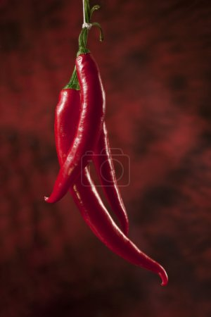 Photo for Red hot chili papers over dark red background - Royalty Free Image