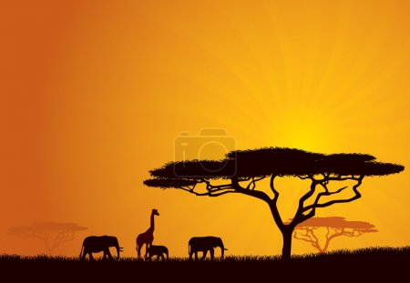 Illustration for African Wildlife Background. Nature Background Series. - Royalty Free Image