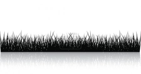 Illustration for Black Vector Grass Isolated On White - Royalty Free Image