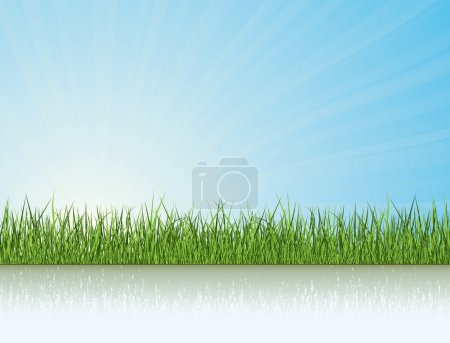 Foto de Hierba verde bajo luz del sol. colección de vectores de naturaleza - Imagen libre de derechos