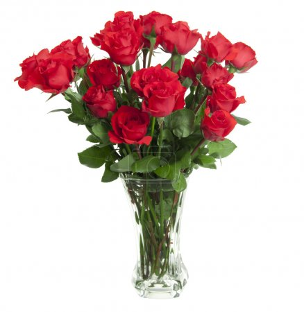 Photo for Two dozen red roses isolated on white background with the green stems in a large glass vase with water. Copyspace on all four sides. - Royalty Free Image