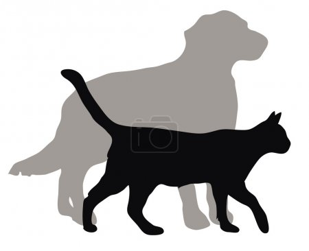 Cats and dogs illustrations
