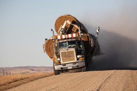 Balles de foin de transport de camionnettes
