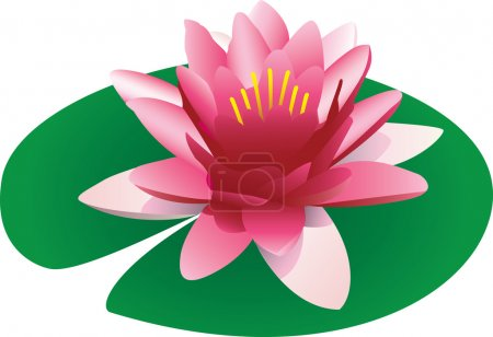 Illustration of a floating pink lotus