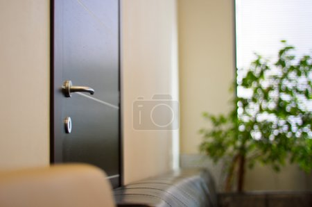 Wenge door with a metal handle in the office close up