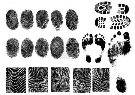 Illustration for Black and White Vector Fingerprints and footprints - Very accurately scanned and traced. - Royalty Free Image
