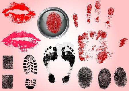 Fingerprint Footprints and Lips