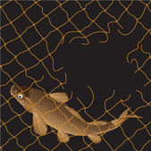 Carp fishing nets