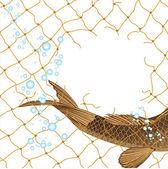 Fish in fishing nets