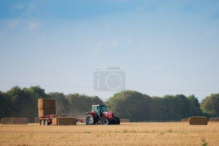 Photo pour Récolteuse dans un champ agricole - image libre de droit