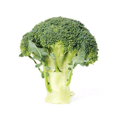 Photo pour Brocoli frais vert isolé sur blanc - image libre de droit