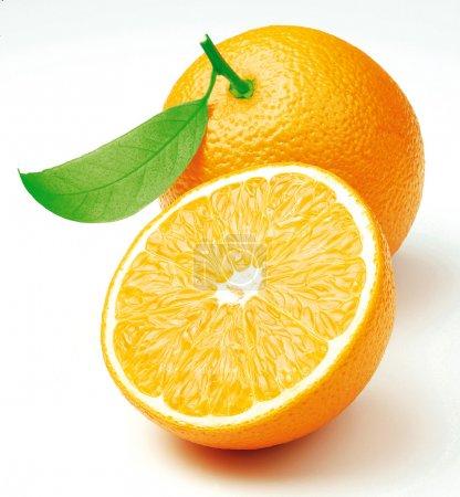 Photo pour Deux fraîchement coupé oranges avec une feuille - image libre de droit
