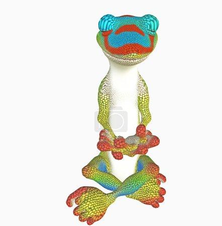 Yoga gecko toon
