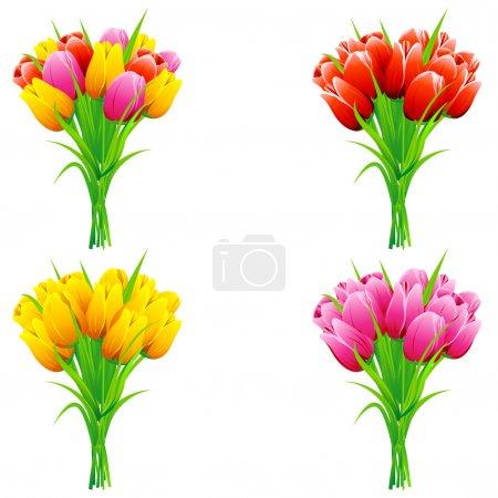 Illustration pour Illustration d'un ensemble de tulipes dans un bouquet sur fond isolé - image libre de droit