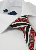 Shirt with paisley necktie