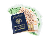 Belarusian passport with euros
