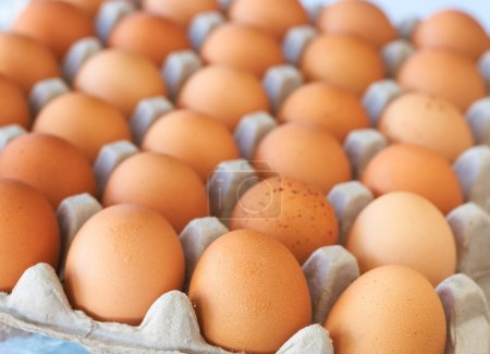 Photo for Full tray of freshly laid free range organic eggs - Royalty Free Image