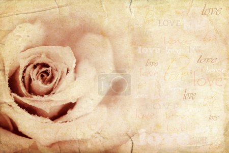 Photo for Grungy rose background, holiday festive card with love text - Royalty Free Image