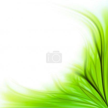Photo pour Beau fond de bordure de fleur d'herbe verte fraîche isolé sur blanc - image libre de droit