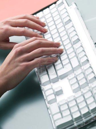 Photo pour Mains féminines tapant sur le clavier - image libre de droit