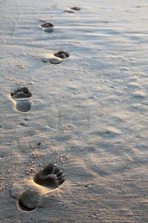 Photo for Close view of some spaced barefoot tracks on the sand. - Royalty Free Image