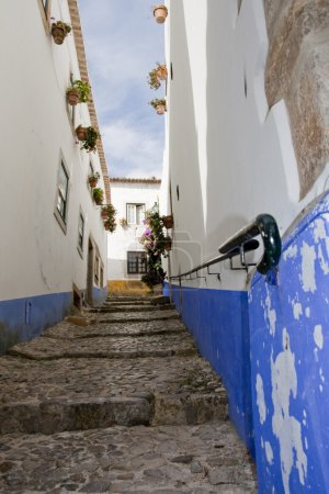 Typical street of obidos
