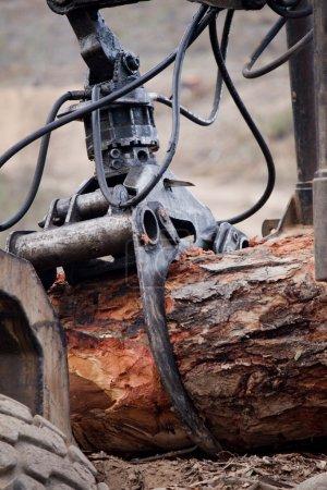 Photo pour Vue d'une machine d'exploitation un morceau brut de bois. - image libre de droit