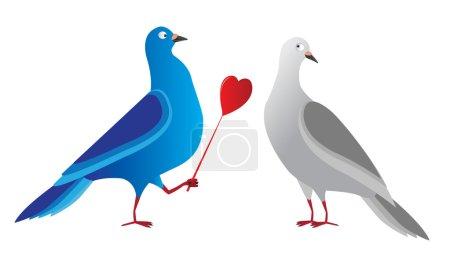 Doves pigeons heart