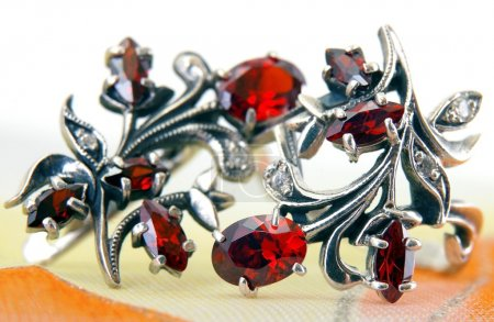 The Silver earrings with a red garnet - Still-life...